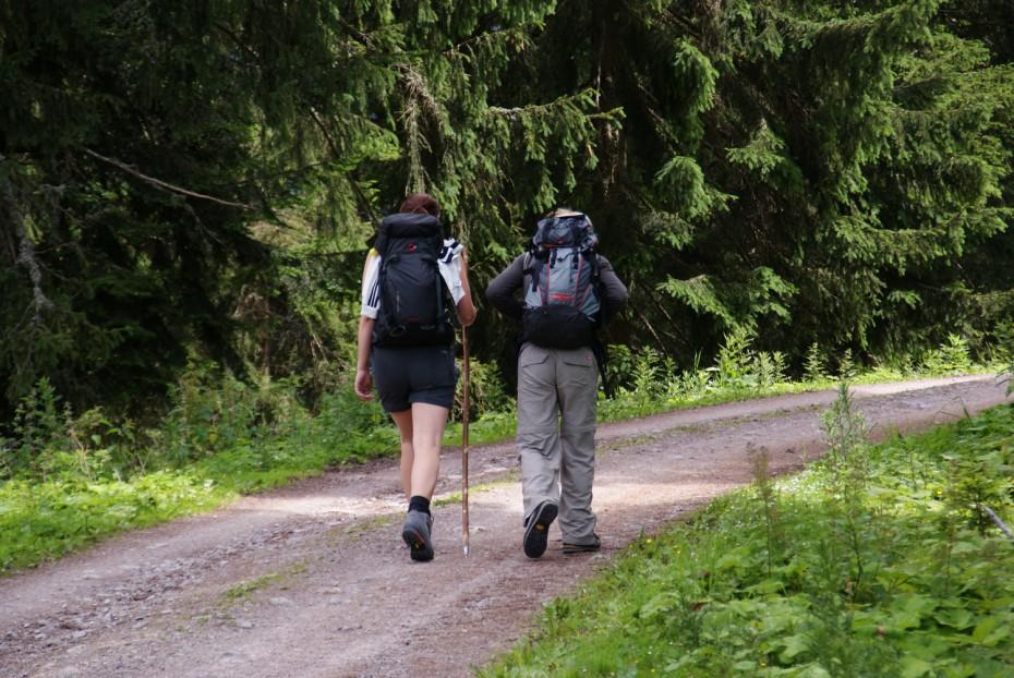 Wandern auf der Loseggalm