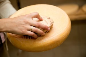 Käseproduktion in der Almsennerei